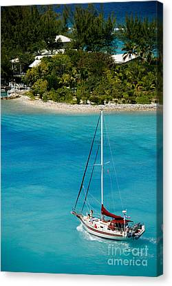 Sailboat On Azure Waters Nassau Bahamas Canvas Print by Amy Cicconi