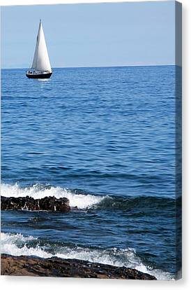 Sailboat On Superior Canvas Print by Bridget Johnson