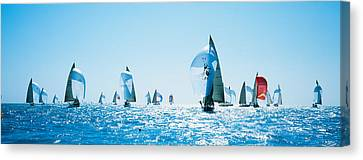 Sailboat Race, Key West Florida, Usa Canvas Print by Panoramic Images