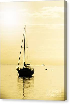 Sailboat With Sunglow Canvas Print by Barbara Henry