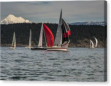Sailboats And Mt Baker Canvas Print