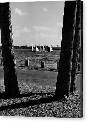 Watercraft Canvas Print - Sailboats At Jupiter Island by Serge Balkin