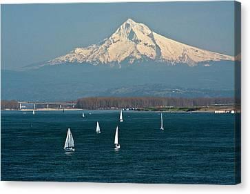 Sailboats, Columbia River, Mount Hood Canvas Print