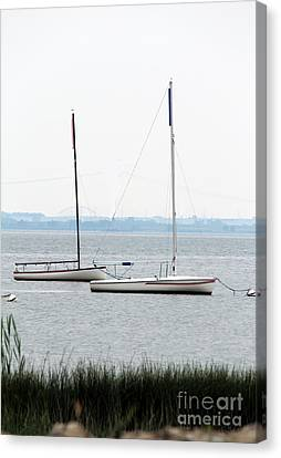 Sailboats In Battery Park Harbor Canvas Print