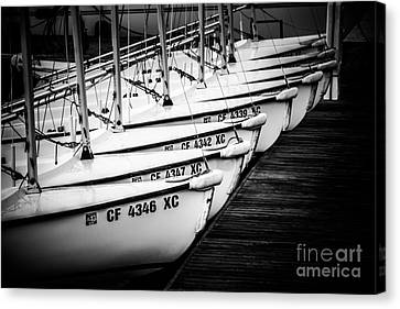 Sailboats In Newport Beach California Picture Canvas Print by Paul Velgos