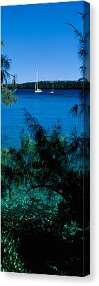 Tonga Canvas Print - Sailboats In The Ocean, Kingdom by Panoramic Images