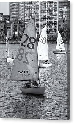 Sailboats On The Charles River II Canvas Print by Clarence Holmes