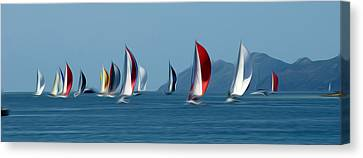 Sailboats Canvas Print by Stefan Petrovici