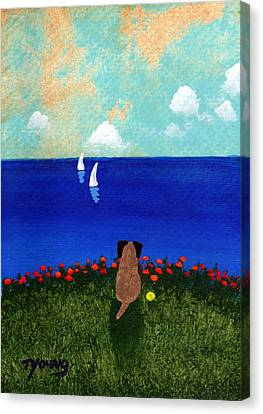 Sailboats Canvas Print by Todd Young