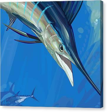 Sailfish Detail Canvas Print by Tom Dauria