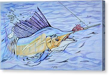 Sailfish On The Line Canvas Print by Edward Johnston