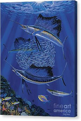 Sailfish Round Up Off0060 Canvas Print by Carey Chen