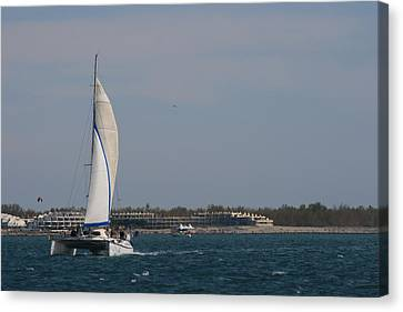 Canvas Print featuring the photograph Sailing Across The Water by Phoenix De Vries