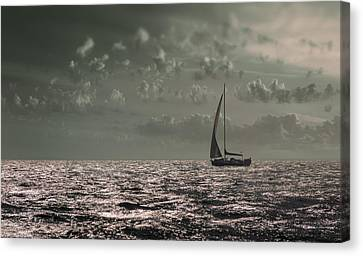Sailing Canvas Print by Akos Kozari