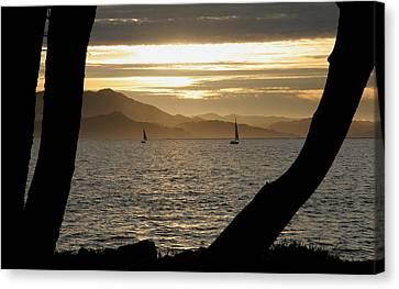 Sailing At Sunset On The Bay Canvas Print by Robert Woodward