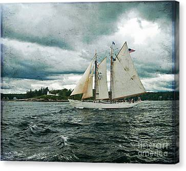Sailing Away  Canvas Print by Alana Ranney