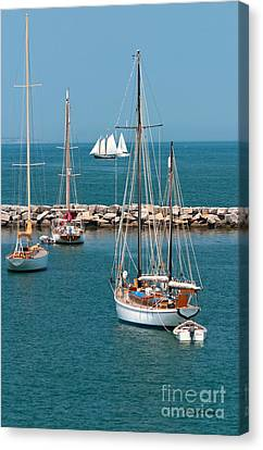 Sailing Away Canvas Print by Michelle Wiarda