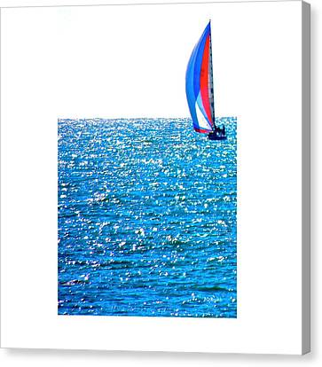 Sailing Canvas Print by Brian D Meredith