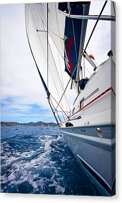 Sailing Bvi Canvas Print by Adam Romanowicz