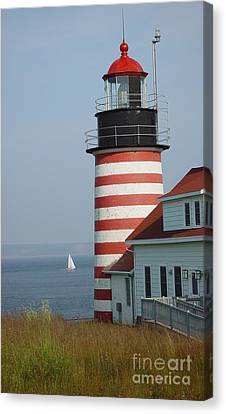 Sailing By West Quoddy Head Canvas Print by Christopher Mace