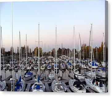 Sailing Club Marina Canvas Print by Dee  Savage