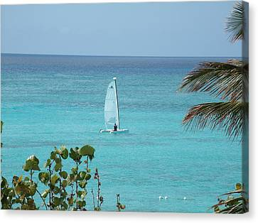 Canvas Print featuring the photograph Sailing by David S Reynolds