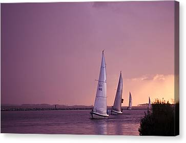 Sailing From The Sun Canvas Print by Kelly Reber