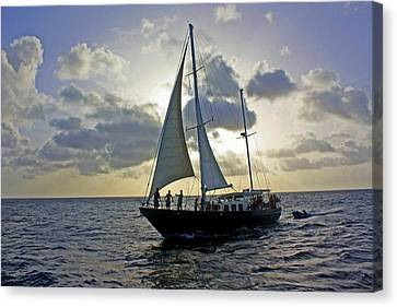 Sailing In Aruba Canvas Print