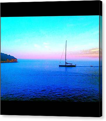 Sailing In Dubrovnik Canvas Print by Maeve O Connell