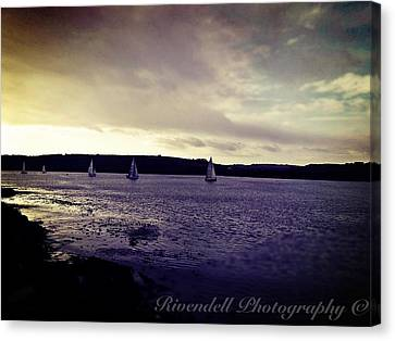 Sailing In Kinsale Canvas Print by Maeve O Connell