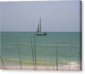 Canvas Print featuring the photograph Sailing In The Gulf by D Hackett