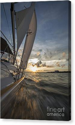Sailing Into The Sunset Charleston Sc Canvas Print