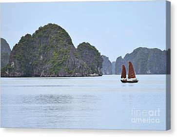 Sailing Junk Boats In Halong Bay Canvas Print by Sami Sarkis