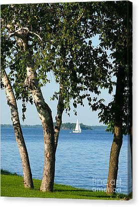Sailing The Lake Canvas Print