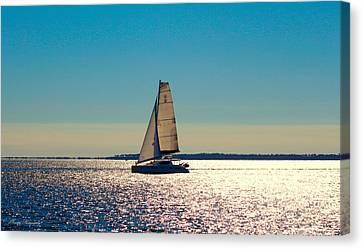 Sailing The Ocean Blue Canvas Print by Debra Forand
