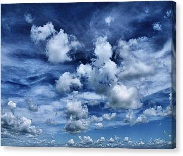 Sailing The Ocean Blue Canvas Print by Tom Druin