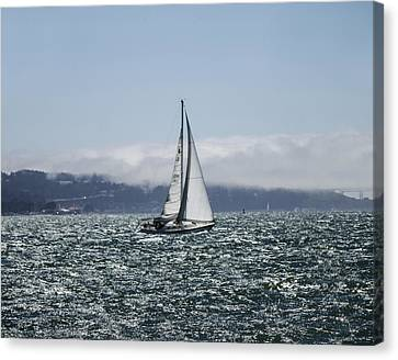 Sailing The Sf Bay Canvas Print by Dee  Savage