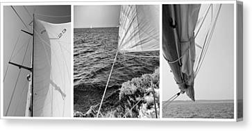 Sail Cloth Canvas Print - Sailing Three Panel by Tony Grider