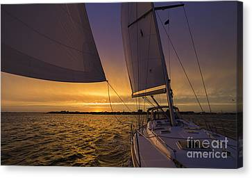 Sailing Yacht Sunset Charleston South Carolina Skyline Canvas Print by Dustin K Ryan