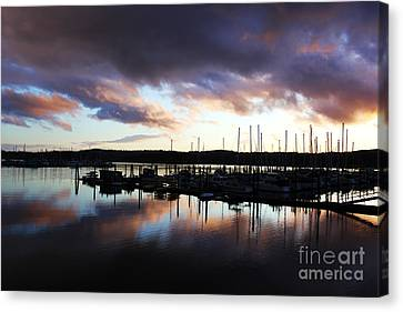 Sailors Delight Canvas Print by Alison Tomich