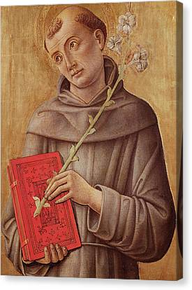 Saint Anthony Of Padua  Canvas Print by Bartolomeo Vivarini