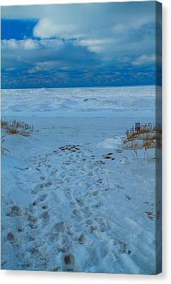 Saint Joseph Michigan Beach In Winter Canvas Print by Dan Sproul