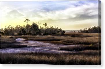 Saint Marks Wetland Sunset Canvas Print by Lynn Palmer