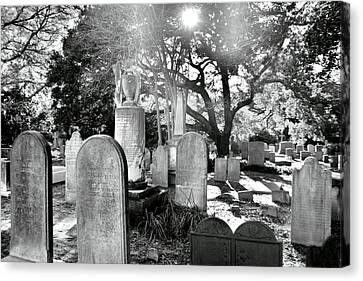 Saint Philips Church Cemetery Charleston Sc Hdr Canvas Print by Lisa Wooten