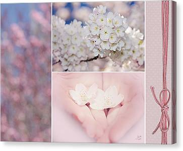 Sakura Triptych Canvas Print by Lisa Knechtel