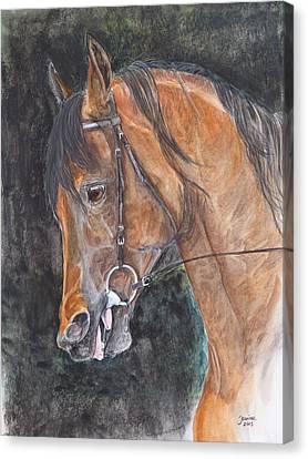 Salih Amir Canvas Print by Janina  Suuronen