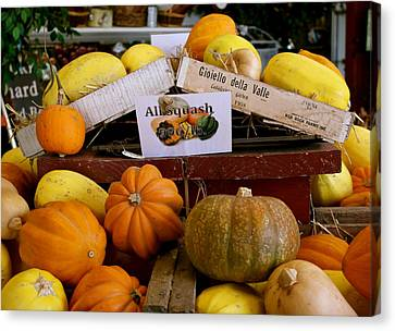 Canvas Print featuring the photograph San Joaquin Valley Squash Display by Michele Myers