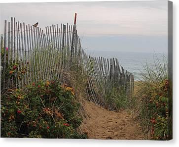 Salisbury Beach Canvas Print