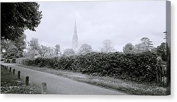 Salisbury Cathedral Canvas Print by Shaun Higson