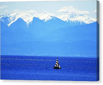 Salish Sea Sail Canvas Print by Annie Pflueger
